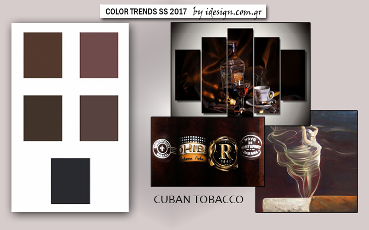 color-trends-ss2017-11